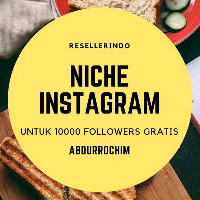 niche bisnis online di Instagram